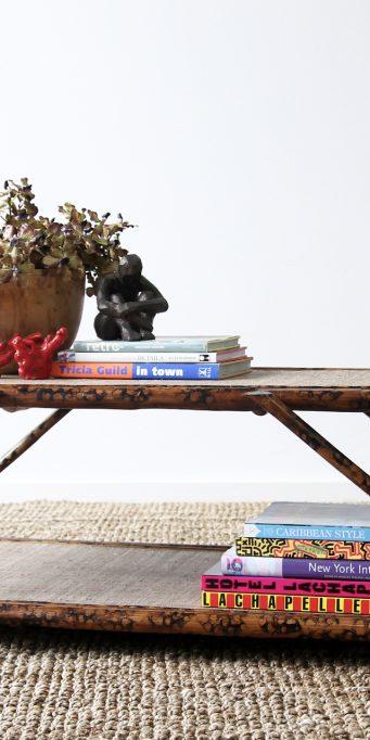 Argyle coffee table tortoise_LS
