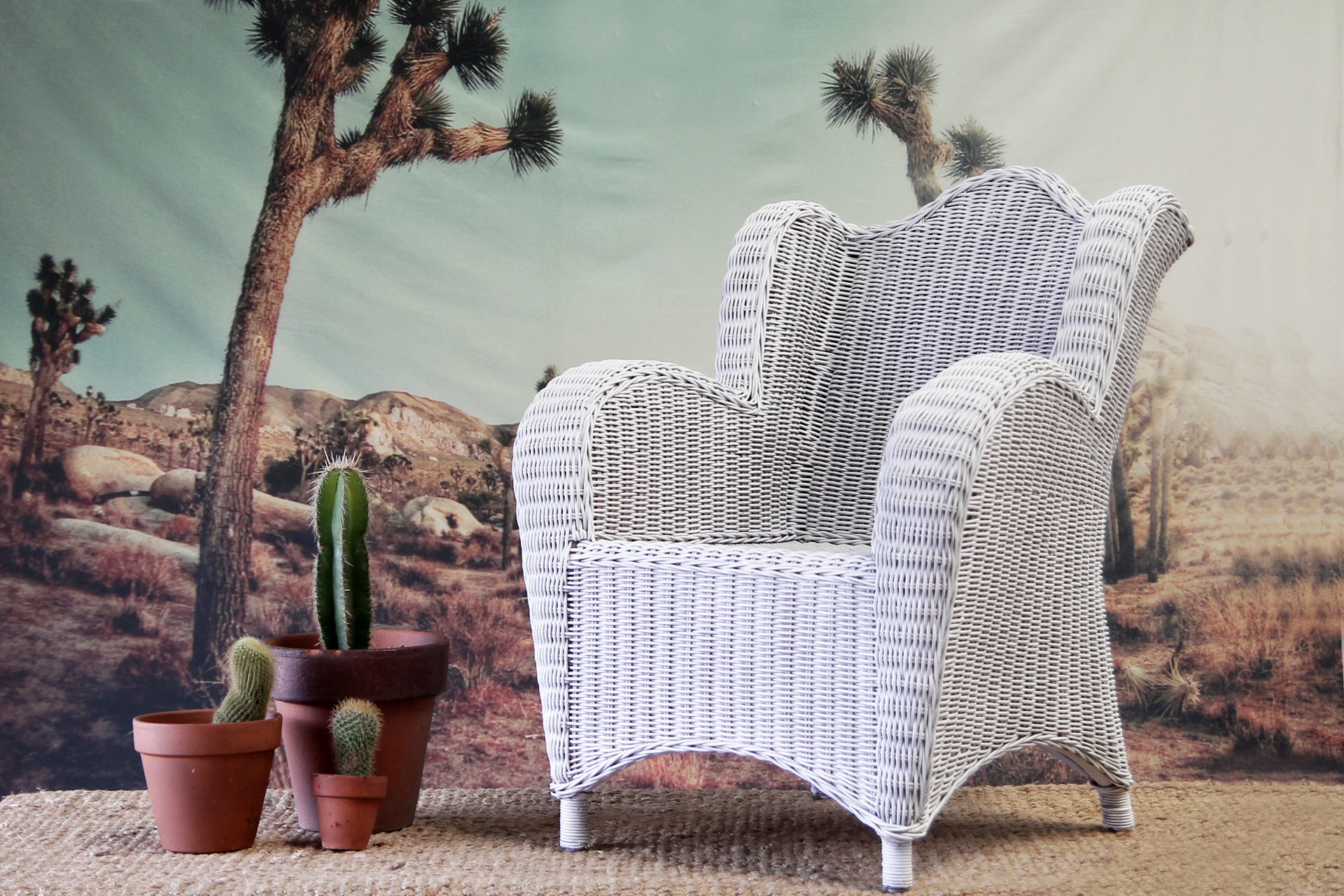 Limited Edition Childs Wing Armchair Naturally Cane